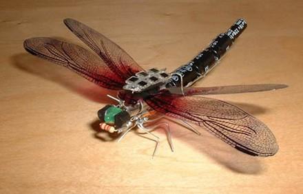 2-24-08-solar-dragonfly.jpg