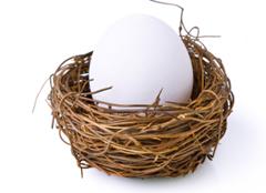 Software Development adalah telur